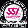 SSI_diamond_logo_1